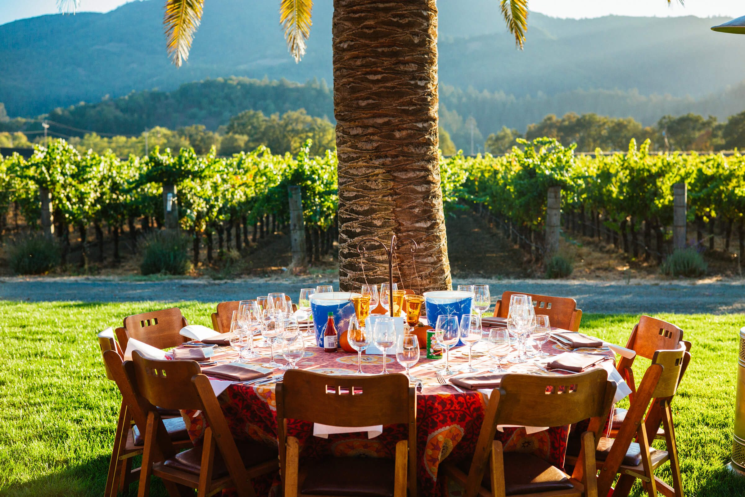 Grgich Hills Estate Winery's Grape Stomp Party in Napa Valley