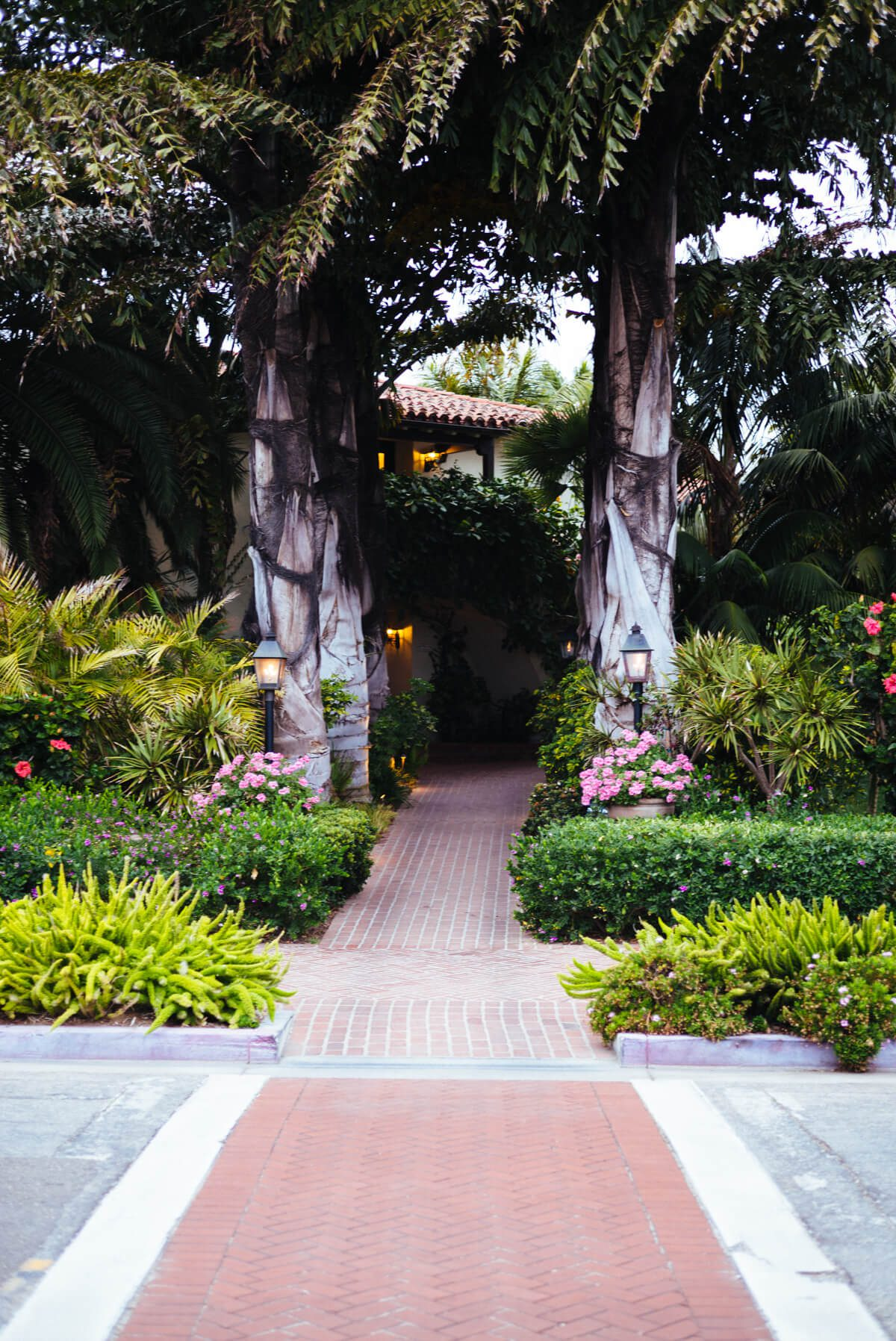 Palm tree entrance to the Four Seasons Santa Barbara, see more on The Taste Edit