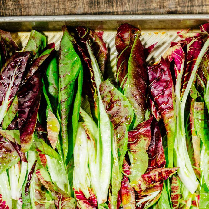Grilled radicchio by the taste edit
