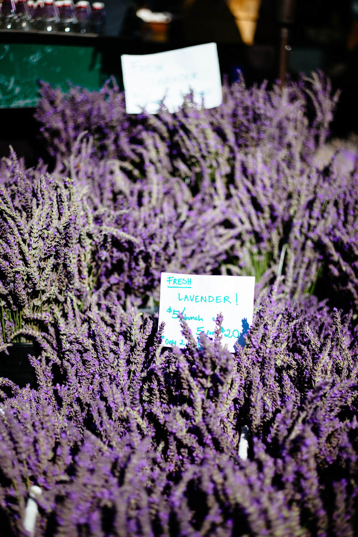 Lavender from eat well cuesa farmers market with the taste sf
