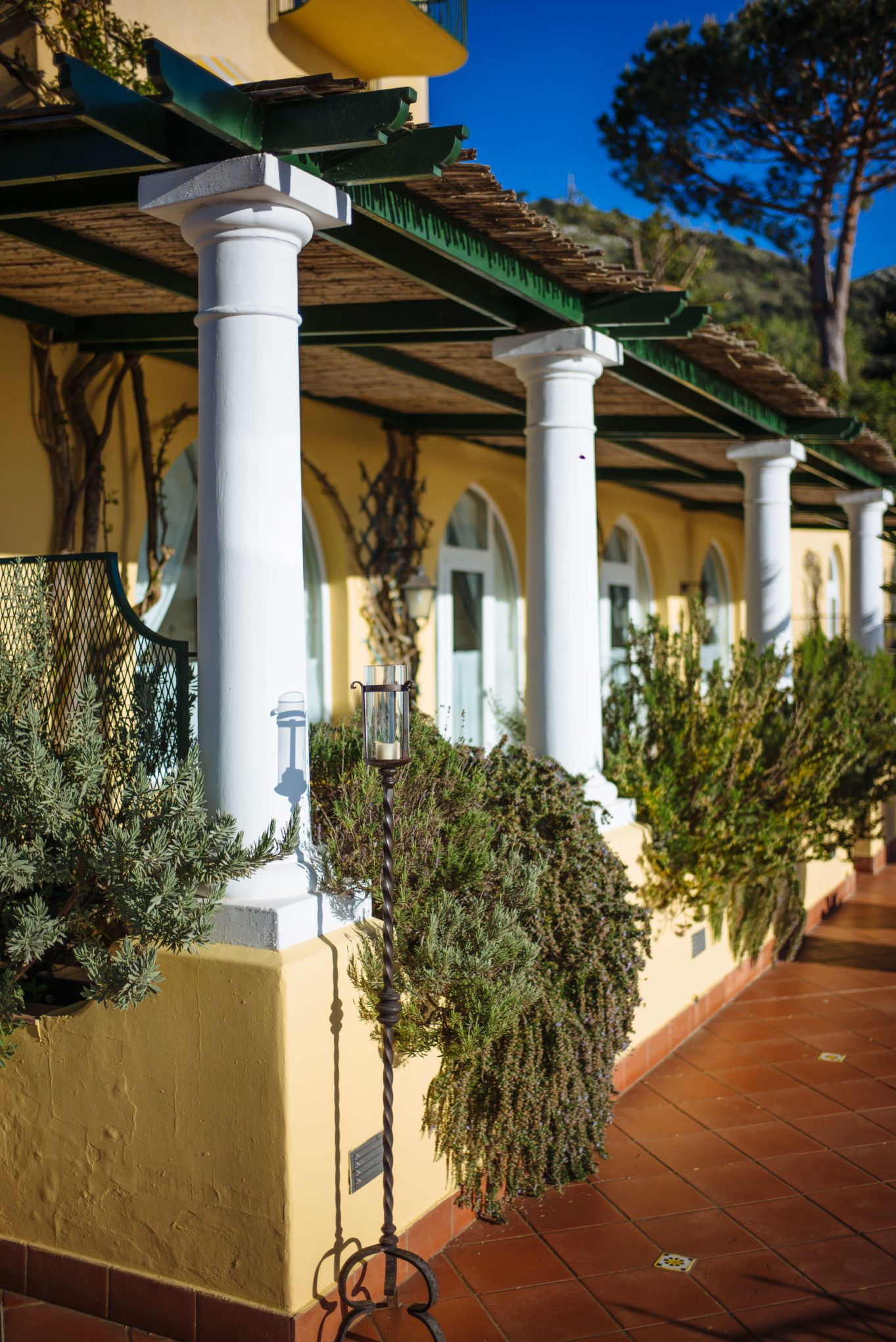 Rosemary climbing on the balconies at Hotel Caesar Augustus Capri Italy, The Taste Edit