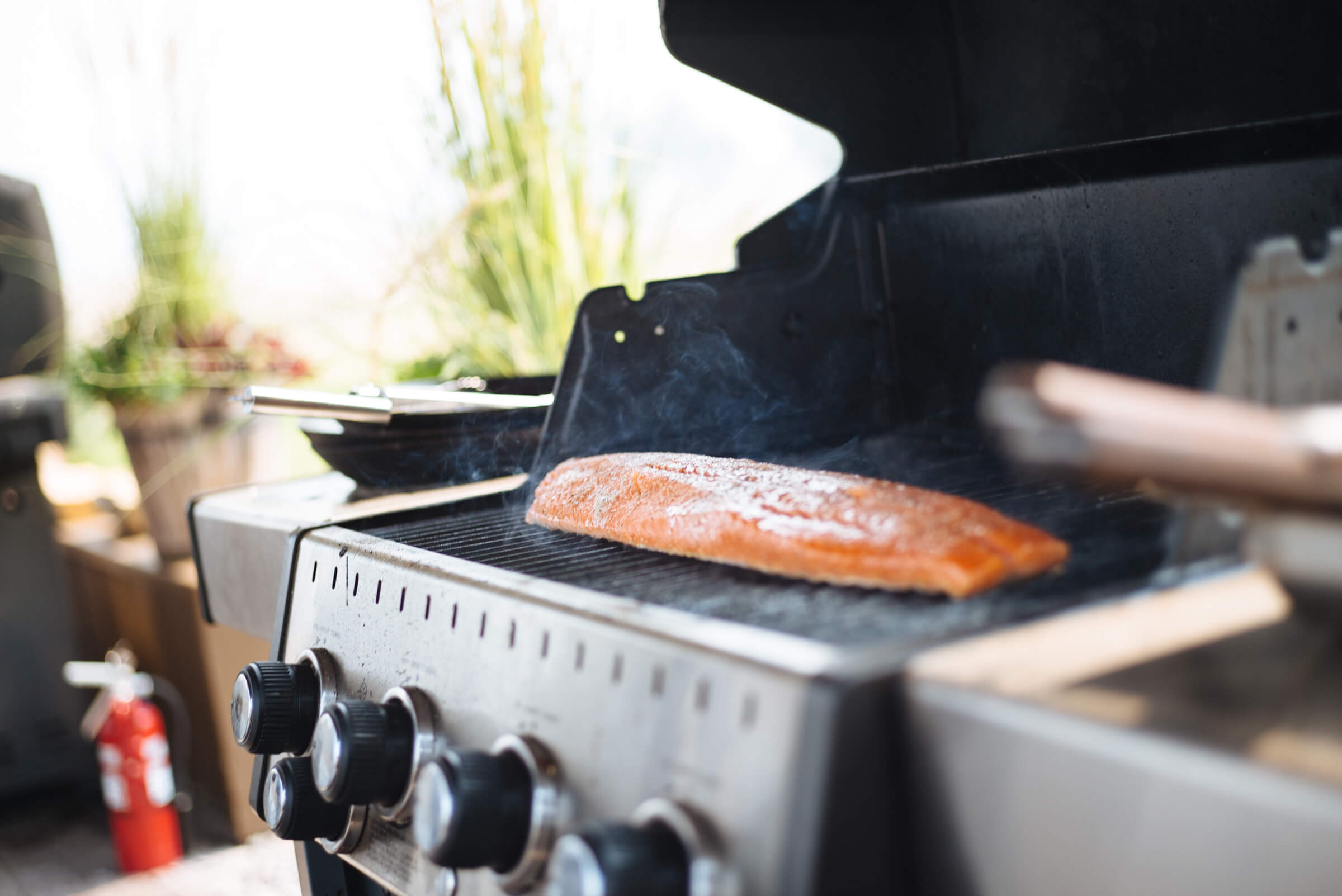 How to grill salmon with skin on a gas grill, how much time on the grill the resort at paws up, montana glamping, cookbook live, greg denton OX restaurant Portland, The Taste Edit