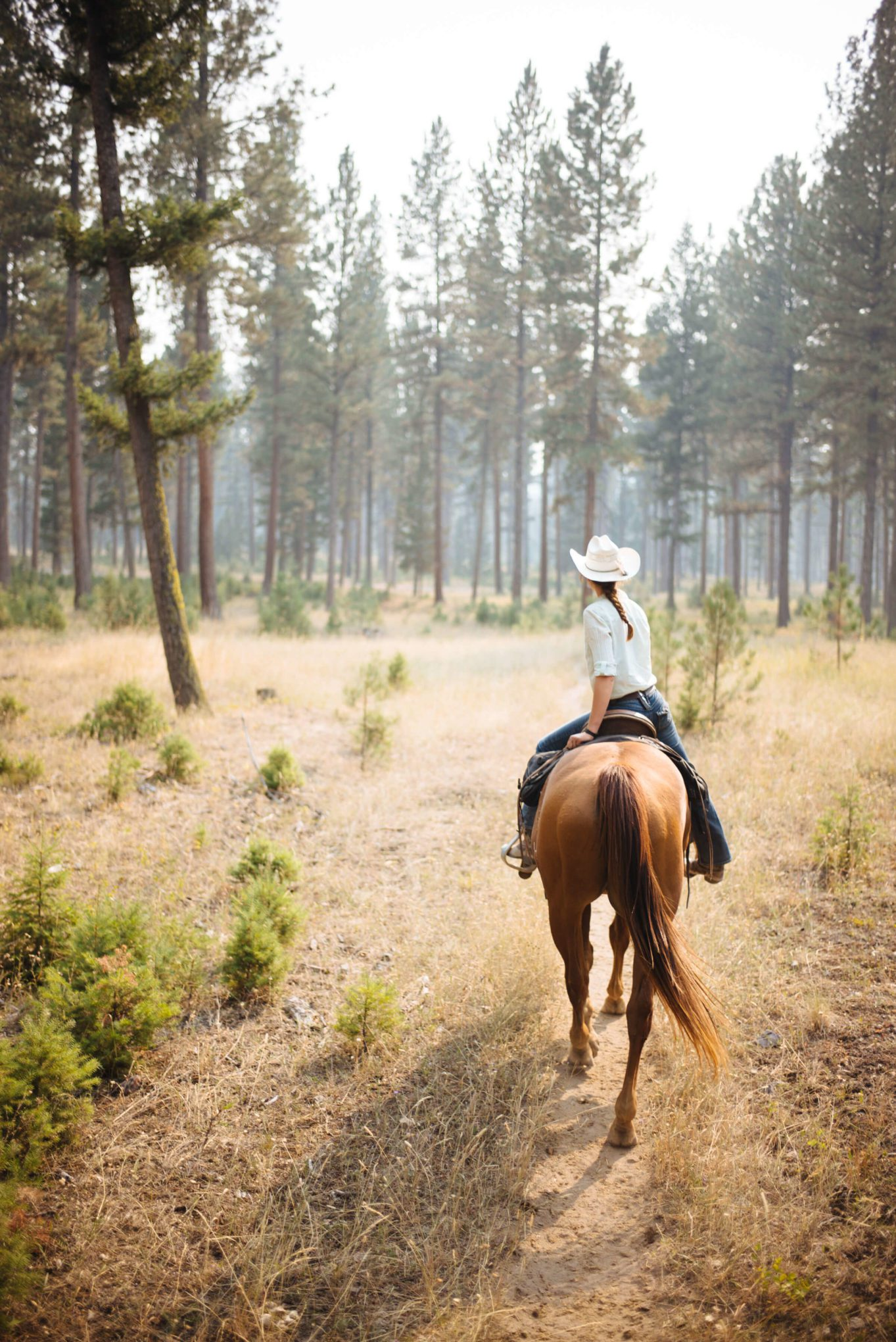 Horseback riding at Paws up in Montana with The Taste Edit