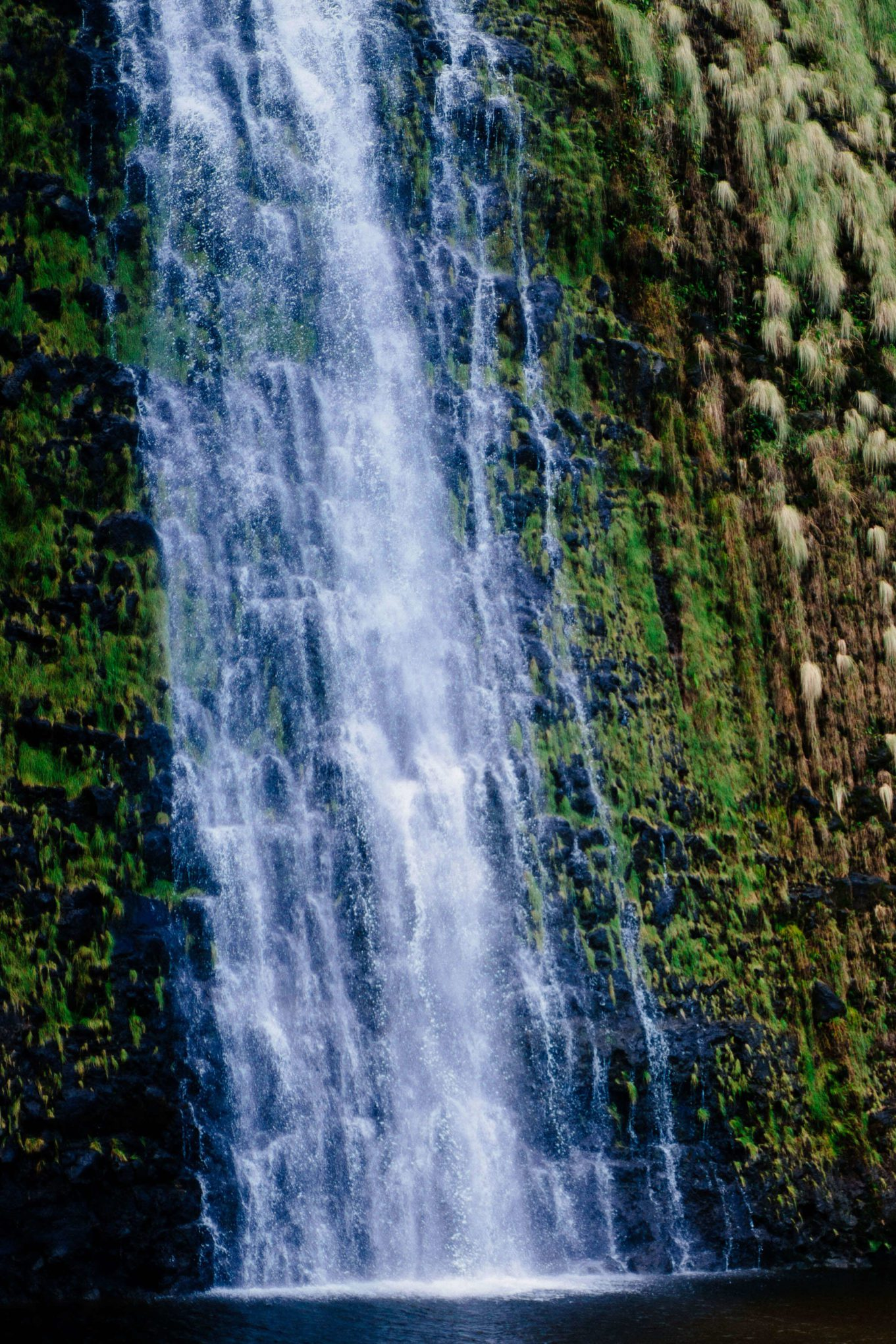 Visit Kona and the Big Island of Hawaii, see the waterfalls upclose, The Taste SF
