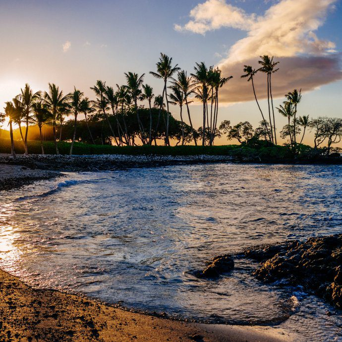 Visit the big island of Hawaii. We're sharing the best restaurants, things to do, and tips for your visit on thetasteedit.com #travel #hawaii
