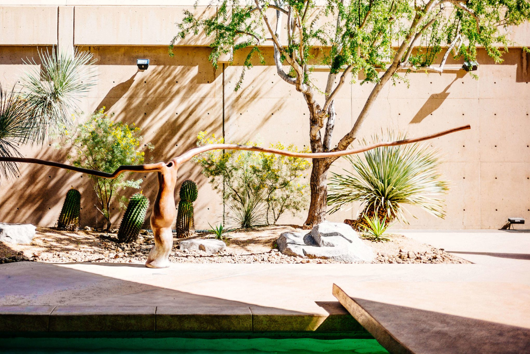 You should visit the sculpture garden at the Palm Springs Art Museum, The Taste Edit