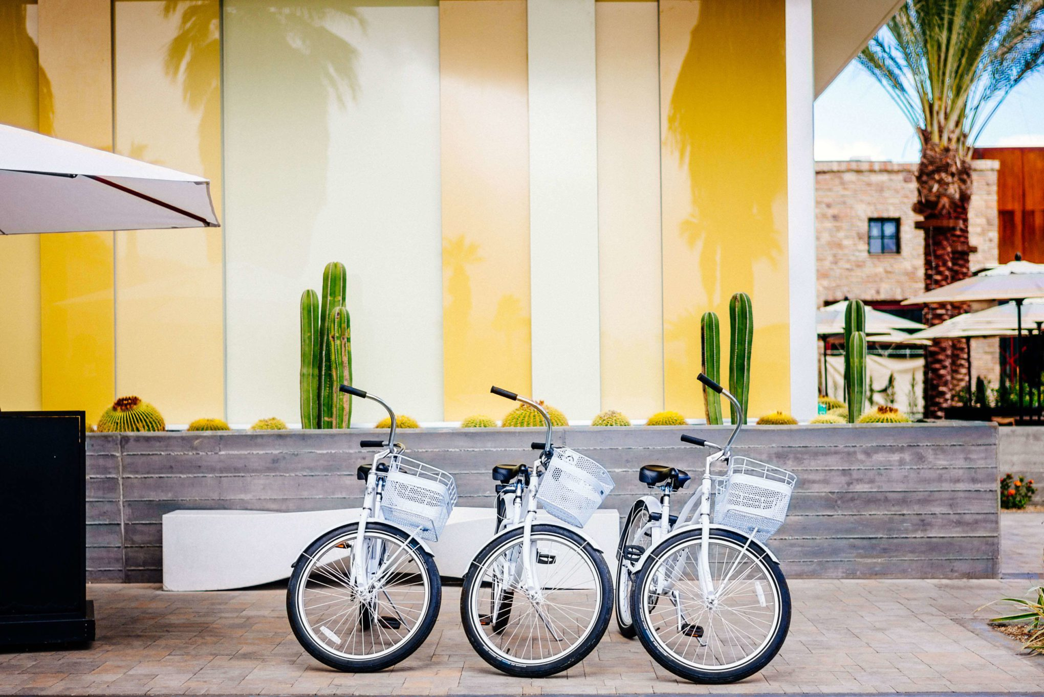 Take a bicycle to tour Palm Springs homes when you stay at the Kimpton Rowan Hotel in Palm Springs is a dessert retreat, The Taste SF