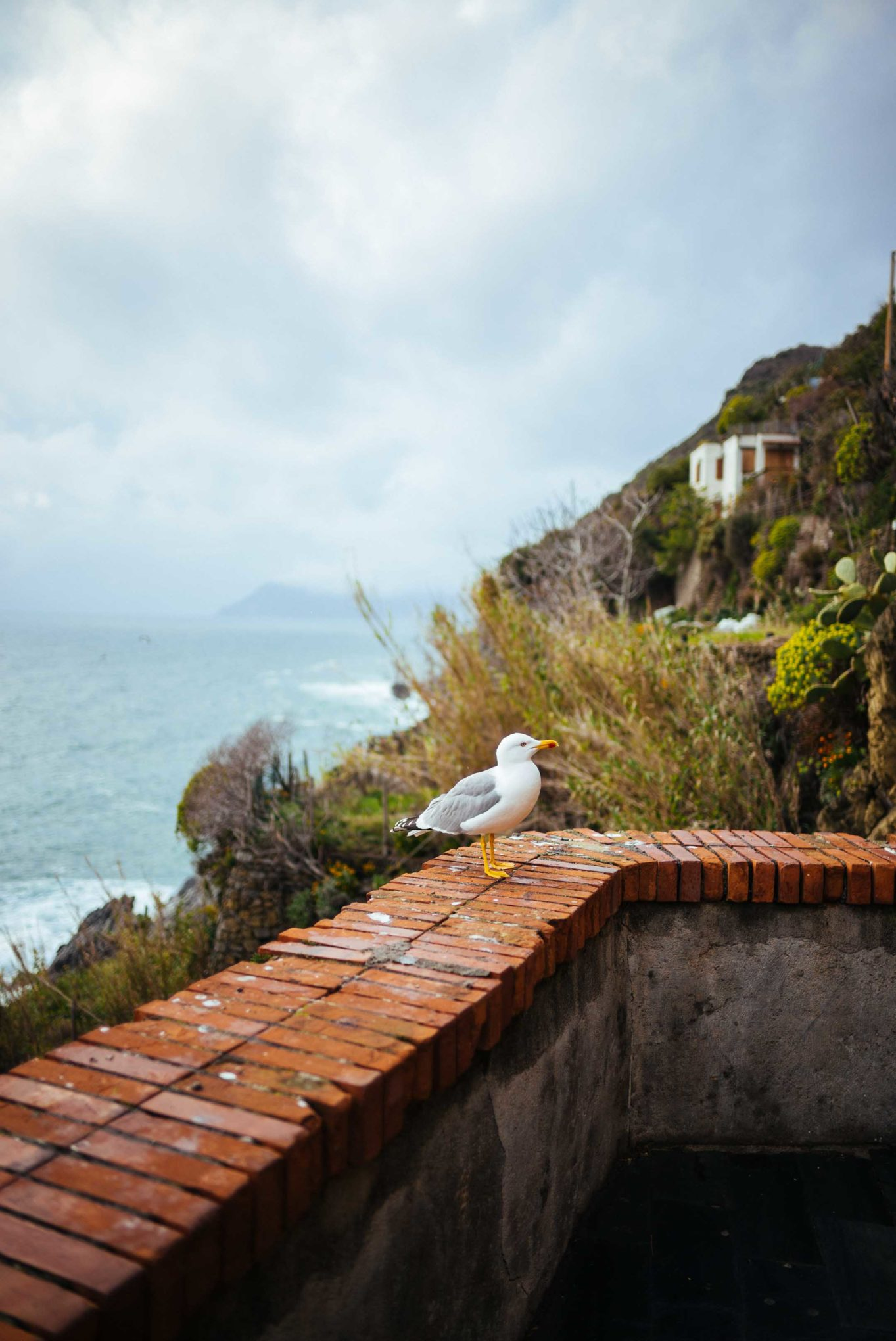 The Taste Edit is sharing some of the best tips for your visit to Cinque Terre. Get beautiful memorable views of the Mediterranean Sea from Ramagore.