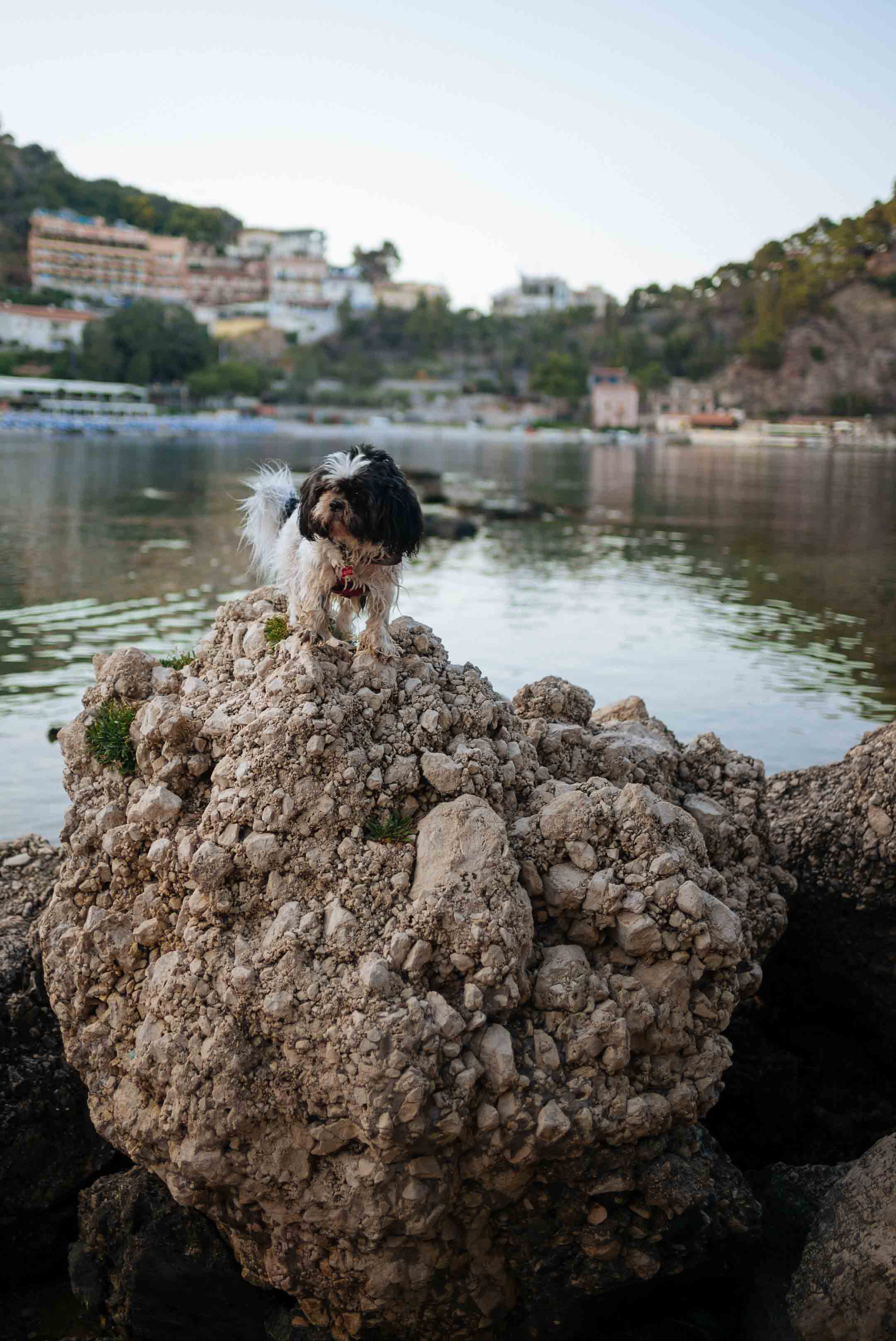 Alfio on the rocks of Isola Bella in Sicily