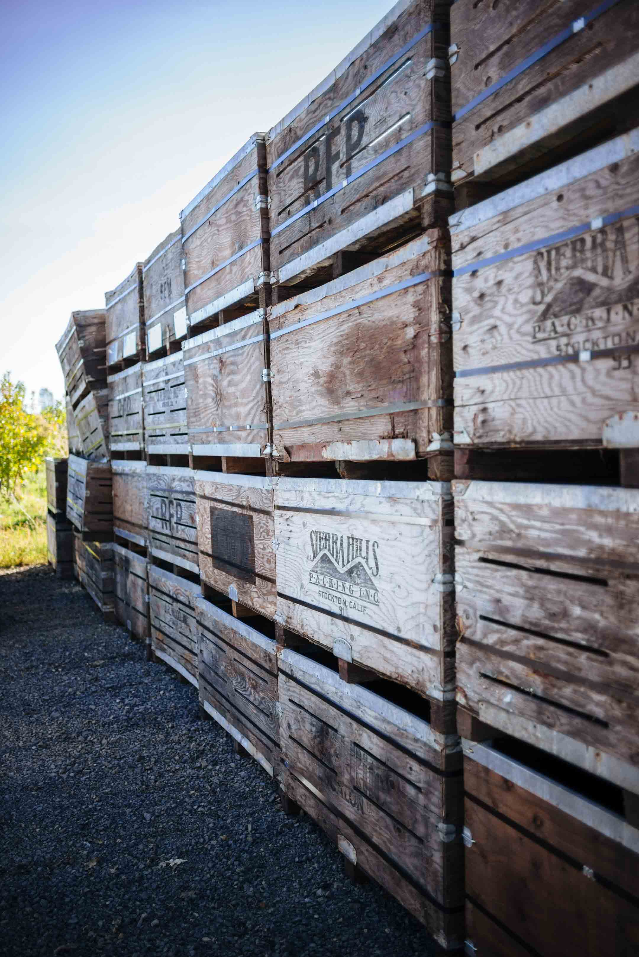 Indigeny Reserve, a 160 acre apple orchard that specializes in the production of cider and French-style apple brandy.